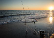 Fishing Rods In The Surf