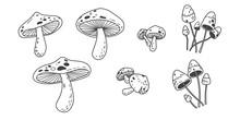 Mushroom Icon Vector Illustration Doodle Logo