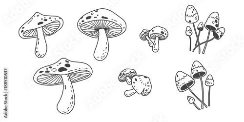 Fényképezés mushroom icon Vector illustration doodle logo