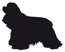 American Cocker Spaniel Dog - Vector Black Silhouette Isolated