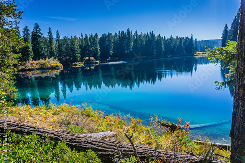 Clear Lake along the Mckenzie River Trail in Oregon