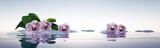 Fototapeta Kwiaty - Orchideen mit Steinen im See
