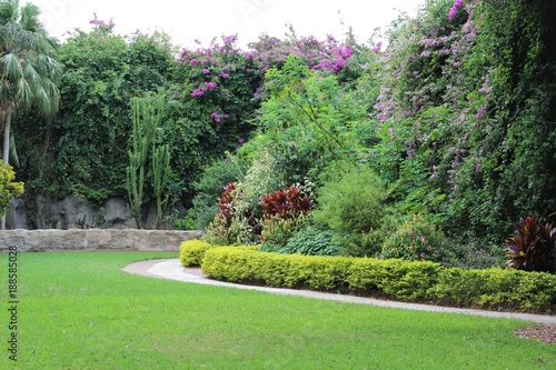 garden with tropical plants and flowers that has a path and stone wall