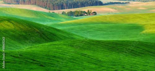 Foto op Plexiglas Groene hilly field. spring morning. a beautiful sunrise in the field