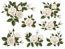 White Rose Boutonniere. Set For Floral Design Of A Greeting, Wedding Or Invitation Card. Bouquet Of Decorative Garden Flower. Bud, Petals And Leaves Of Plant.