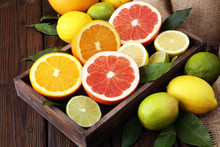 Citrus Background. Assorted Fr...