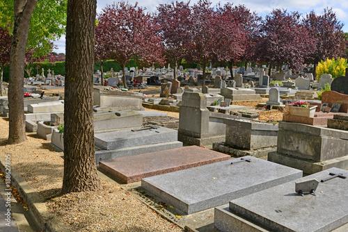 Foto op Canvas Begraafplaats Saint Germain en Laye; France - september 4 2017 : cemetery