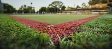 Green Bowls Lawn Close Up Duri...