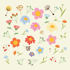 Set of flowers and floral elements isolated . Vector illustration.