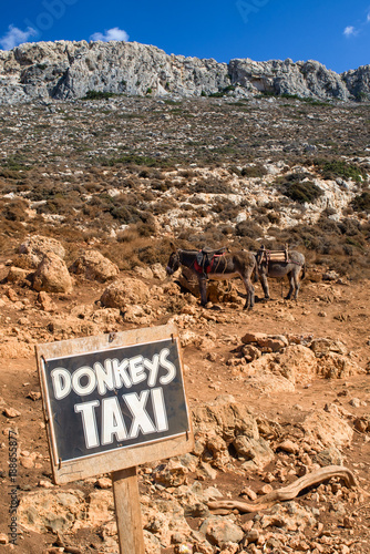 Donkey taxi in Crete island, Greece