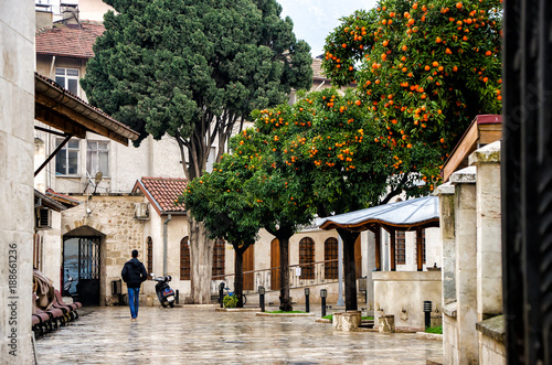 Photo  turkish mosque yard with mandarin trees, motocycle and men's back