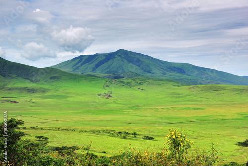 In de dag Lime groen Tanzania green hills, Africa