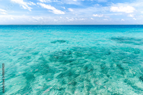 Canvas Prints Green coral Sea and sky at Maldives.