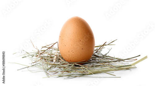 Chicken egg on white background