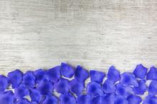 Valentine's Background With Blue Petals