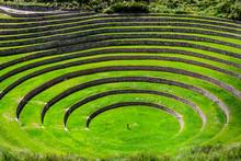 Unique Inca Circular Terraces ...