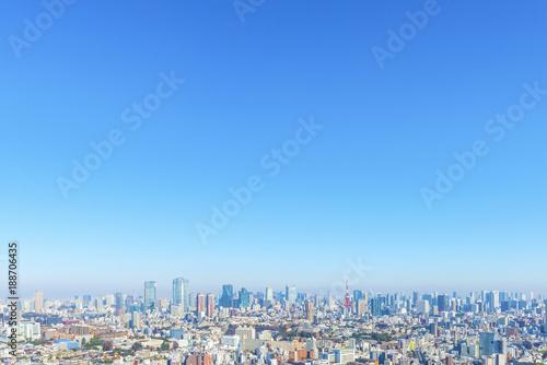 fototapeta na drzwi i meble 恵比寿から見た港区方面の街並みと東京タワー
