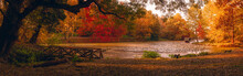 Autumn Scene At The Lake In Pa...