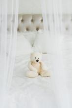 White Teddy Bear Sits On A Whi...
