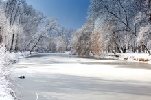 White Winter Landscape With Fr...