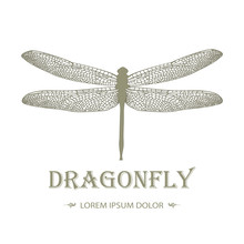 Dragonfly Logo In Vintage Style On A Black Background. Stylish Design Of Tattoos. Vector Illustration. Creativity, Freedom, Speed Concept. Brand, Corporate Identity Template. Editable. Sample Text