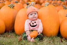 Halloween Pumpkin Autumn Baby