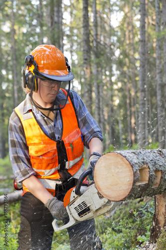 dc2955c5 Lumberjack cutting log in forest – Kjøp dette bildet og utforsk ...