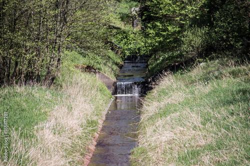 Tuinposter Weg in bos Breitenbach Talsperre Zufluß