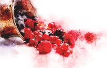 Watercolor Illustration Berries