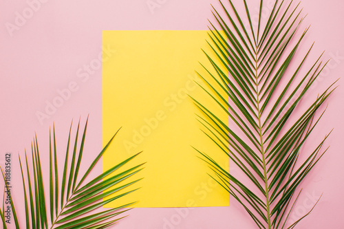 Palm leaves on a pink background with yellow card. Minimal and flat lay.
