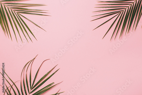 Fotografiet  Palm leaves on a pink background. Minimal and flat lay.