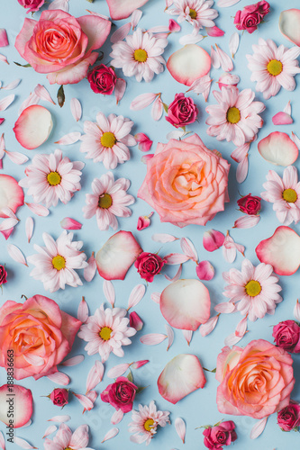 Foto op Canvas Bloemen Floral pattern of roses buds, camomiles and petals on blue background. Flat lay, Top view.