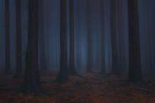 Dark And Scary Fantasy Dreamy ...