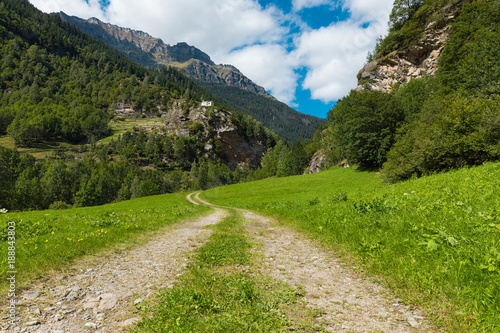Poster Natuur Landscape of the Swiss valley at Rossa in the Grisons
