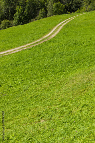 Foto op Canvas Pistache green summer pasture with carrareccia road