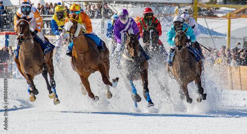 Spoed Foto op Canvas Paardrijden Engadina - Suisse - White Turf