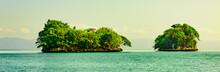 Green Island In The Ocean