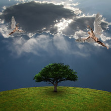 Angels Above Green Tree