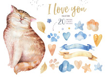 Watercolor Cute Isolated Cat I...