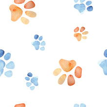 Watercolor Cute Isolated Cat A...