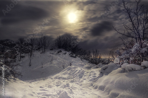 Foto auf Gartenposter Hugel Snowy and frozen Top of hill with cloudy night sky and moonlight with city lights on the background. Forest in Slovakia on the mountain covered with snow.