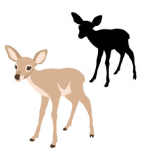 Young Deer  Black Silhouette V...