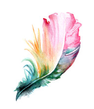 Colorful Hand Drawn Watercolor...