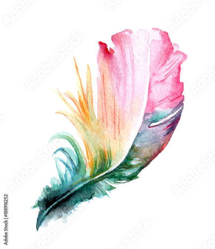 La pose en embrasure Style Boho Colorful hand drawn watercolor vibrant feather set. Boho style. illustration isolated on white background. Bird fly design for T-shirt, invitation, wedding card.Rustic Bright colors.