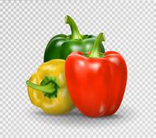 Set Of Three Peppers. Yellow, Red And Green Pepper. Realistic Vector Illustration Of Paprika.