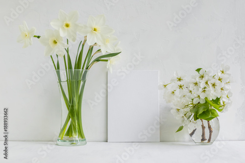 Fototapety, obrazy: Mockup with a white frame and white daffodils in a vase