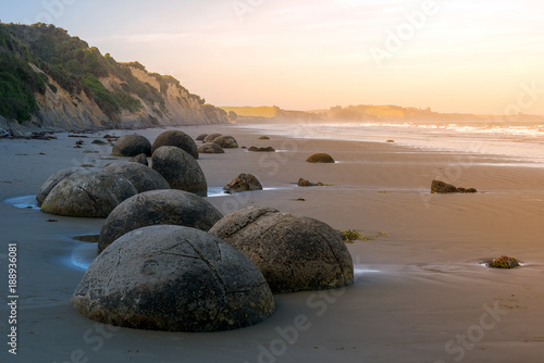 Moeraki boulders in south island Wallpaper Mural