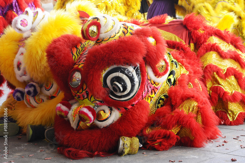 Fotografie, Tablou  Lion dance performance during Chinese New Year Festival at Seremban, Malaysia