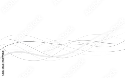 Fototapeta Abstract curved black lines on white obraz