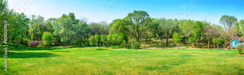 Obraz Park in early spring. Located in Shenyang Botanical Garden, Shenyang, Liaoning, China.	 - fototapety do salonu